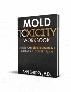 Ann Shippy Mold Toxicity Workbook